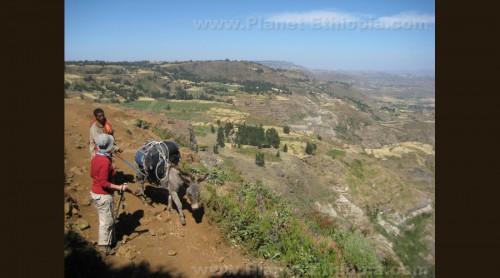 EthiopianLandscapeMerch1.jpg
