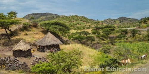 Planet Ethiopia Picture Gallery