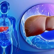 የጉበት መመረዝ 5 መነሻዎች - Causes for Liver Poisoning