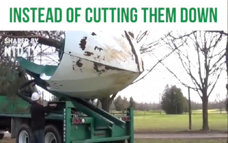 This machine MOVES trees so you don't have to cut them down like emoticon