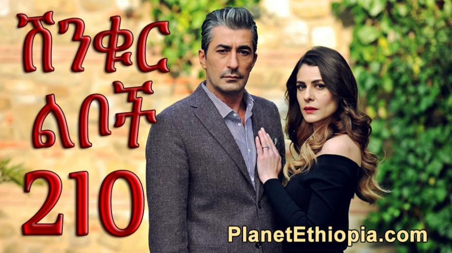 Shinkur Liboch - Part 210  (ሽንቁር ልቦች) Kana TV Drama