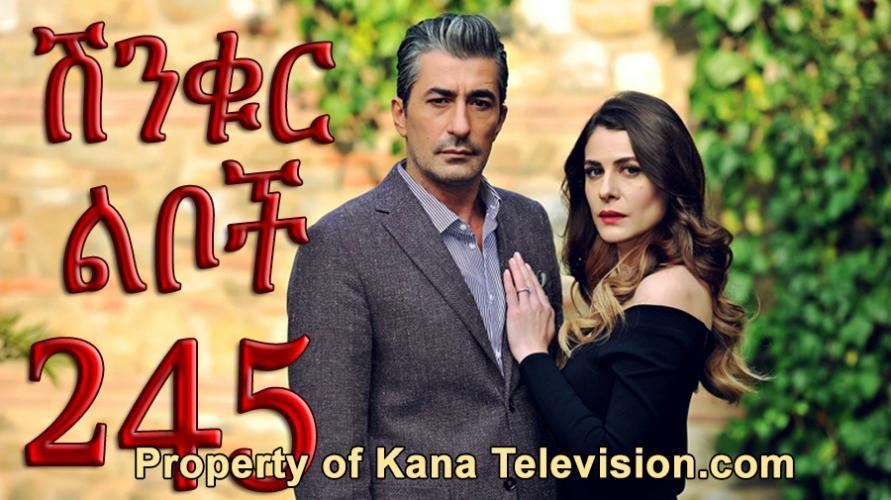 Shinkur Liboch - Part 245   (ሽንቁር ልቦች) Kana TV Drama