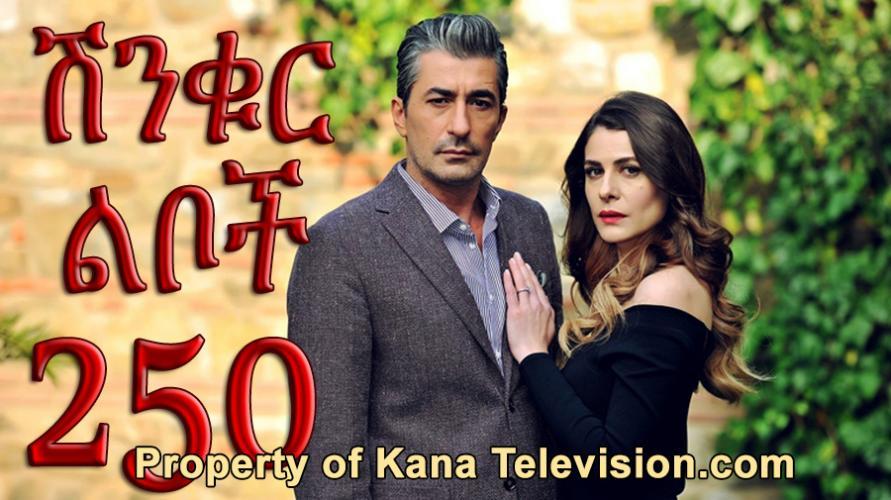 Shinkur Liboch - Part 250  (ሽንቁር ልቦች) Kana TV Drama
