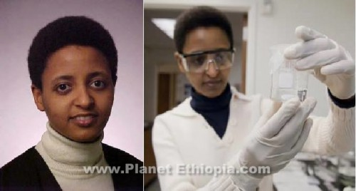 "Sossina M. Haile (born 1966) is an Ethiopian-American chemist. She is a professor of Materials Science and of Chemical Engineering at the California Institute of Technology  Sossina Haile created a new type of fuel cell by default. In the late 1990s, the Caltech scientist had an idea that she thought might dramatically improve fuel cells, the clean technology that converts chemical energy to electricity to power cars, buses and power plants. Haile's idea was to employ an entirely new type of ""superprotonic"" compound that might help supply power at dramatically lower cost. But when fuel-cell makers balked at revamping their entire systems to try her solution, Haile decided to fabricate the world's first solid-acid fuel cell in her lab. Early in 2008, a Pasadena, California start-up called Superprotonic, founded by two of her former graduate students—will ship the first commercial prototypes to energy-systems makers. The output is barely enough to power a 100-watt bulb, but hopes are high that the small start will someday produce powerful fuel cells for commercial use."