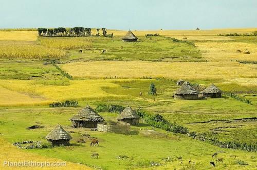 EthiopianVillage.jpg