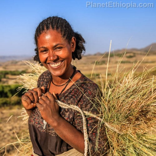 SmilingEthiopianVillageWoman.jpg