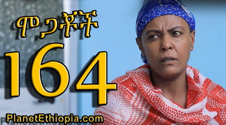 Mogachoch Season 7 - Part 164 (ሞጋቾች)