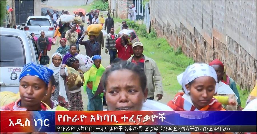 Displaced of Burayou and Addis Abeba Subburbs - ቡራዩ, የአዲስ አበባ አካባቢ የተፈናቀሉ ዜጎች