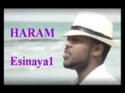 "Hayleyesus Feyssa - Haram ""ሀራም"" (Amharic)"