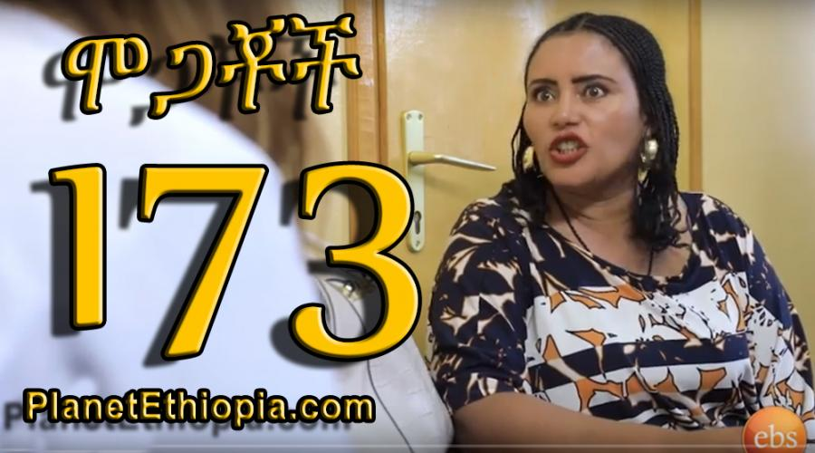 Mogachoch Season 7 - Part 173 (ሞጋቾች)