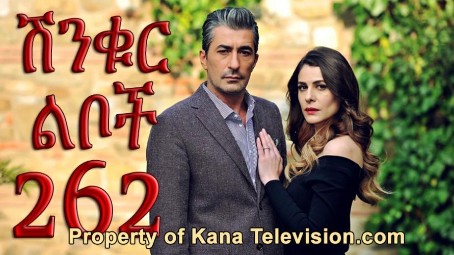 Shinkur Liboch - Part 262  (ሽንቁር ልቦች) Kana TV Drama